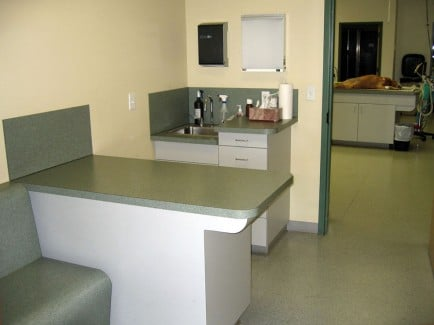 Animal-Emergency-Specialty-Clinic-Treatment-2-Web-1-434x325