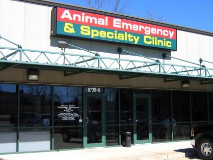 Animal-Emergency-Specialty-Clinic-Treatment-2-Web-2-434x325
