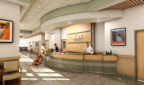 Animal-Medical-Center-Fargo1-500x294